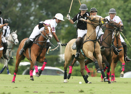 polo photos alex pacheco polo mag ipc polo club 2013 crab orchard audi polo teams