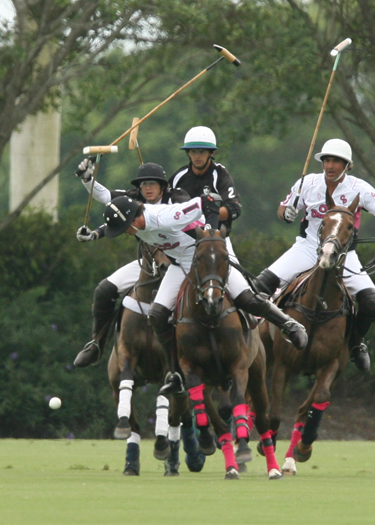 polo photos alex pacheco polo mag ipc polo club 2013 crab orchard audi polo teams 6