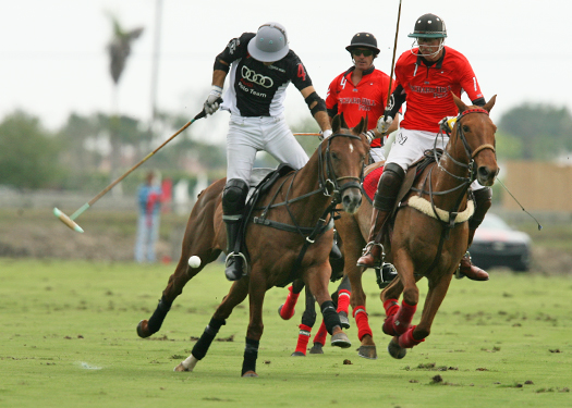 polo photos alex pacheco polo mag ipc polo club 2013 orchard hill audi polo team