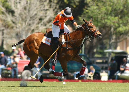USPA Piaget Gold Cup photos Photo Credit- Alex Pacheco Lechuza vs. ERG