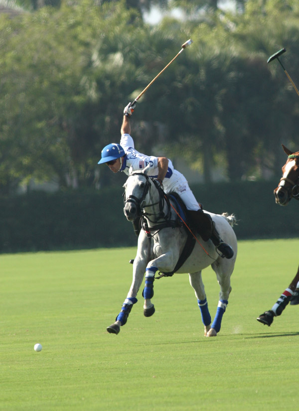 Plenty of polo today at the International Polo Club.